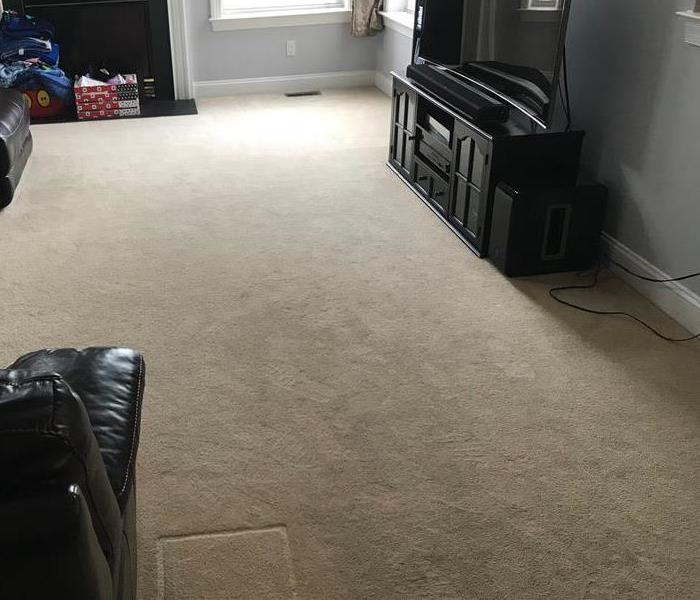 carpets before being cleaned