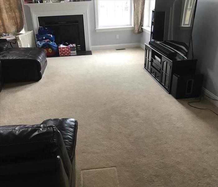 carpet in living room before cleaning