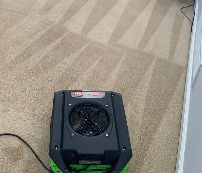 cleaned carpets and air mover