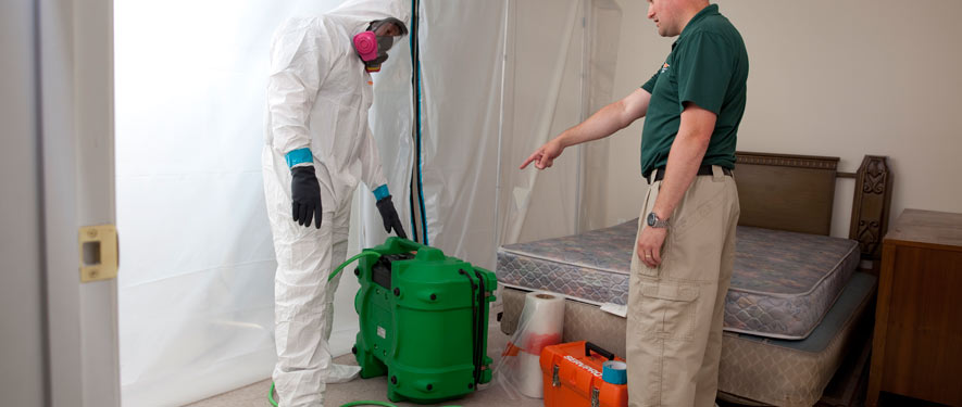 Salem, NJ mold removal process
